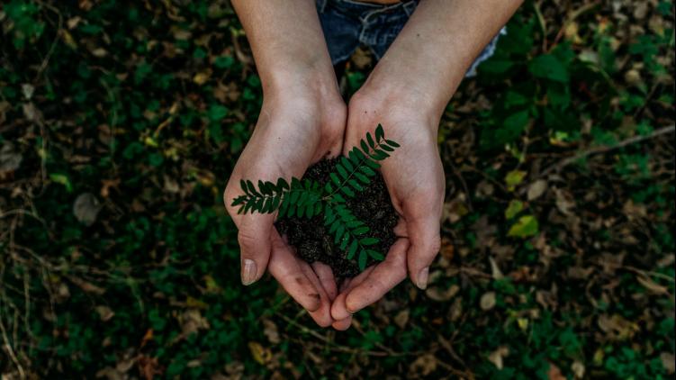 Clear Channel déploie son offre verte avec des campagnes imprimées à l'encre végétale et sur papier recyclé