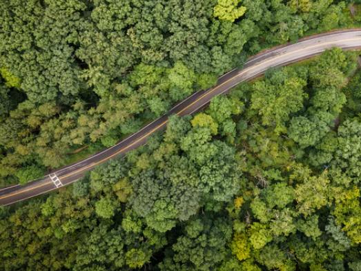 Les engagements concrets de la Publicité Extérieure en faveur de la transition écologique